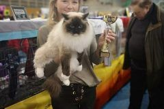ARIANABIV – Best in Variety, Nominations for Best in Show,  BEST in SHOW Category I.