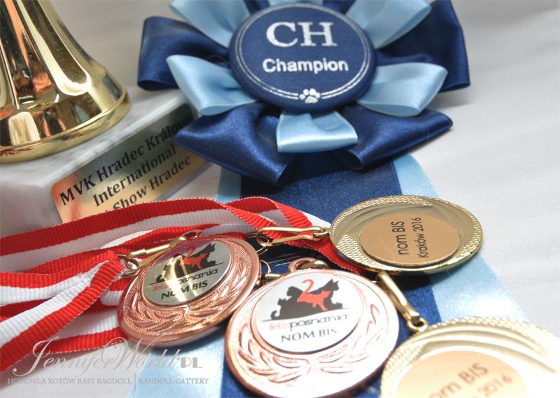 klementyna trofea do Championa